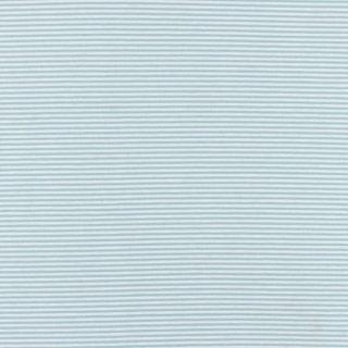Heavy Jersey Streifen Mint-Weiß